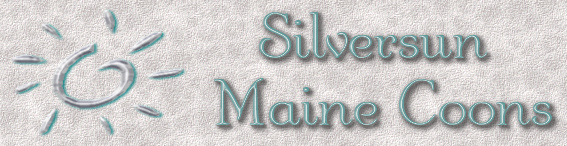 Silversun Maine Coons